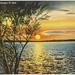 North Dakota Postcards