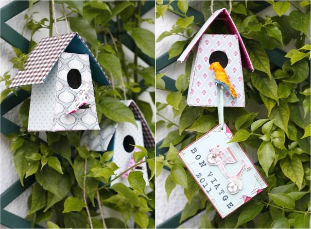 Casetes d'ocells