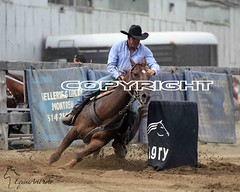 animal sports, rodeo, western riding, event, equestrian sport, sports, barrel racing, cowboy,