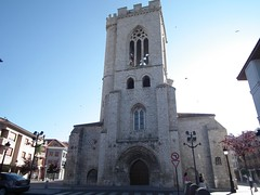 Palencia julio'11