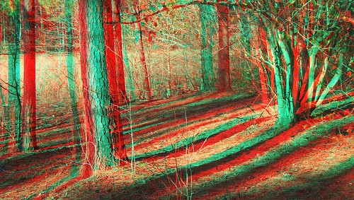 stereoscopic 3d anaglyph stereograph anaglyphs