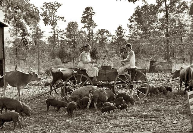 Shelling peanuts in Wolf Creek, Georgia, 1935, by Arthur Rothstein