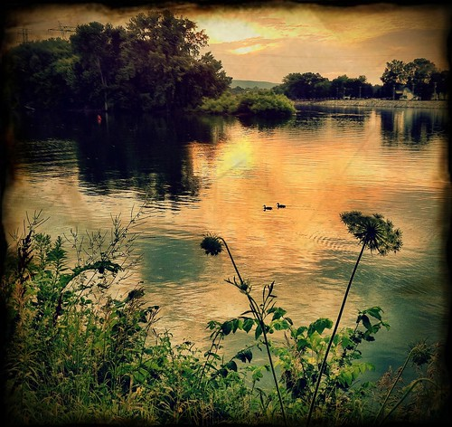 cameraphone sunset orange reflection river ducks mohawk processed iphone 366