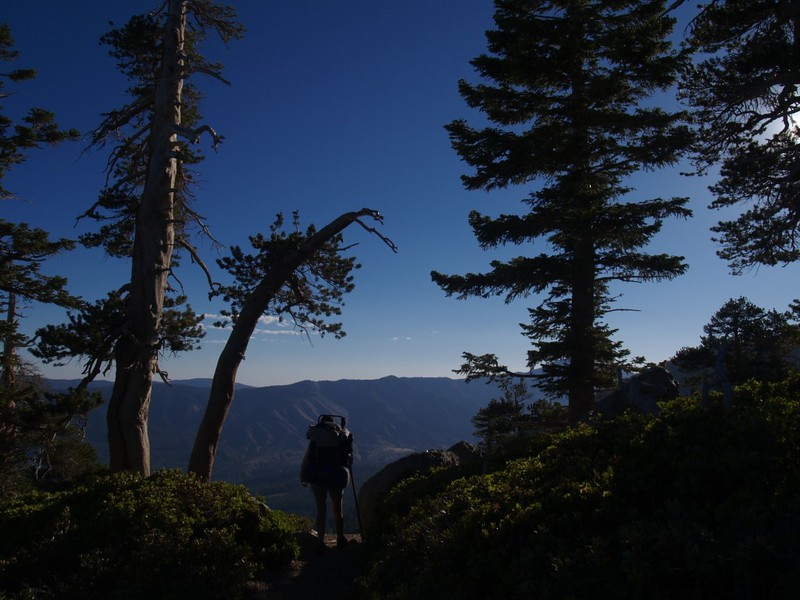 San Bernardino Peak Trail in the morning light