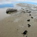 Lake Eyre flood, footprints