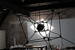 Suspended Hypercube