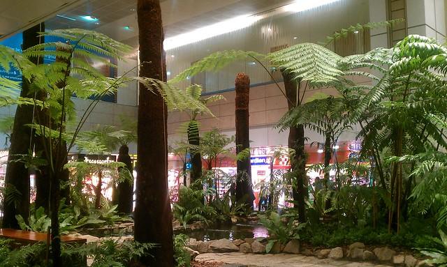 Fern Garden & Koi Pond - Terminal 2