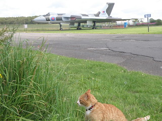 Lloyd and the Vulcan