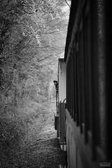 back-check - Photo of Selles-sur-Nahon