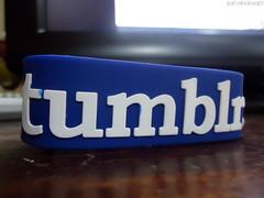 Tumblr Wristband