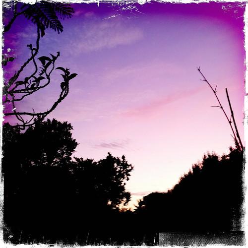 sunset square highresolution wordpress surreal watts app twitter tinarice iphone4 tumblr ashcroft54 iphone365 iphoneography hipstamatic 365dayshipstamatic kodotxgrizzled jonathansbackyard