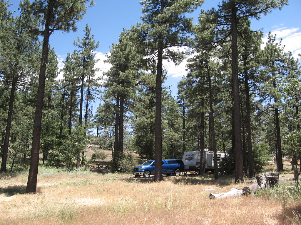 mount laguna Mount laguna is a small census-designated place (cdp) in san diego county, californiait is located at almost 6,000 feet above sea level in a forest of jeffrey pine, east of san diego in the laguna mountains on the eastern edge of.