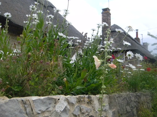Amberley garden