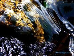 Babbling Brook 2