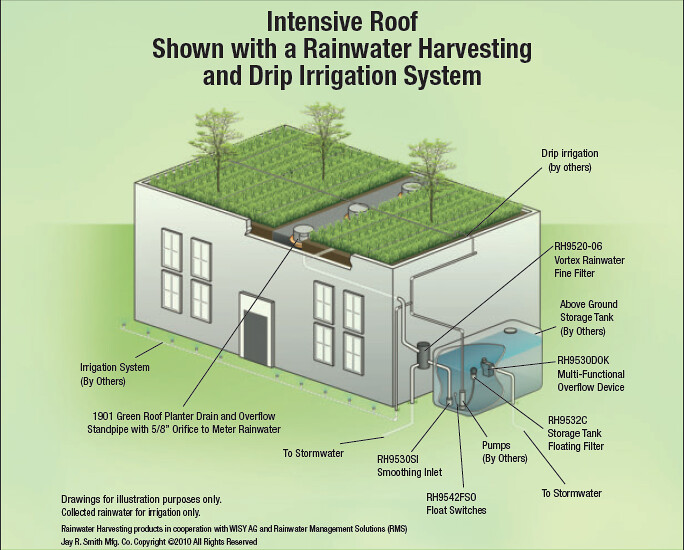 Intensive Roof With Rainwater Harvesting And Irrigation Sy