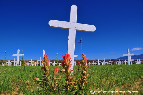 Field Of Crosses
