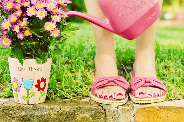 HBM...Give thanks for pink on summer days edition...