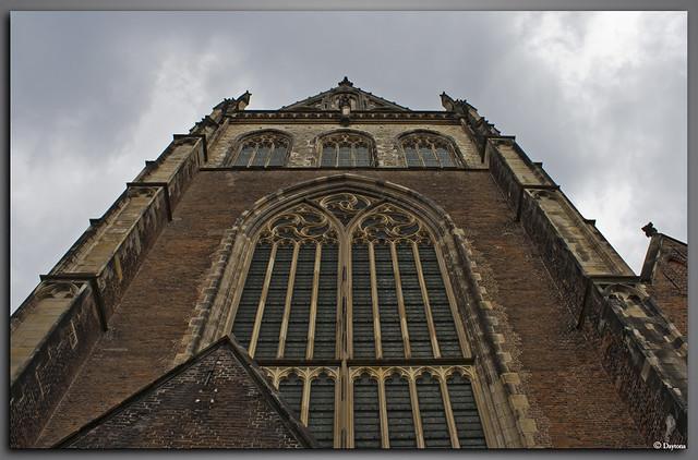 St Bavo kerk Haarlem-6278
