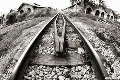 Circular Tracks