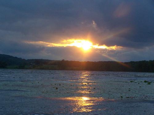 sun forest reflections pond long state longpond andyarthur