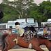Kerrville Rodeo