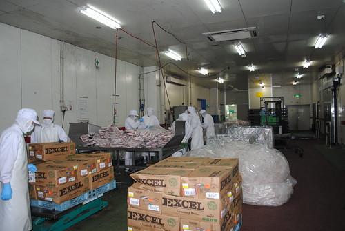 Matsuya Beef Processing Plant
