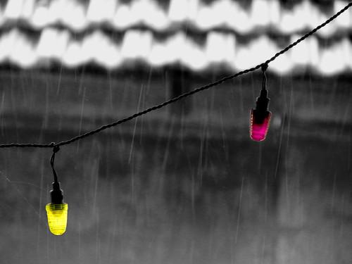Celebrations in the Rain