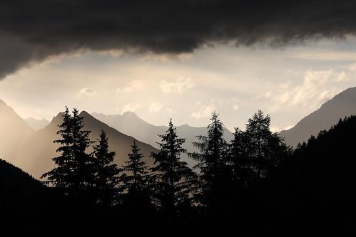 sunset bw mountain tree alberi tramonto albero chiaroscuro montagna shilouette cime contrasto livelli