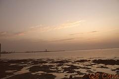 شاطئ شويخ