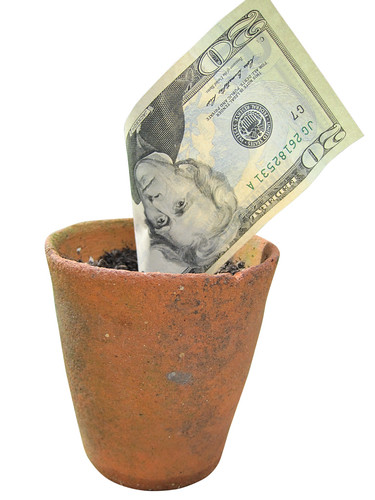 Money doesn't grow in pots