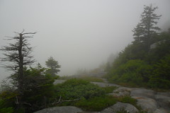Fog on Mt. Monadnock