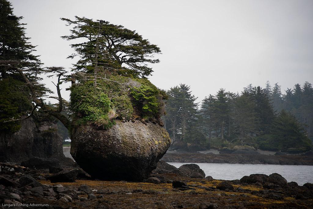 Flowerpot Rock at Langara Island, Haida Gwaii