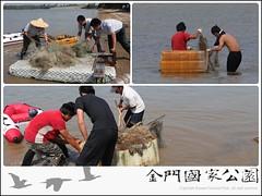 慈湖非法網具取締(2011)-02.jpg