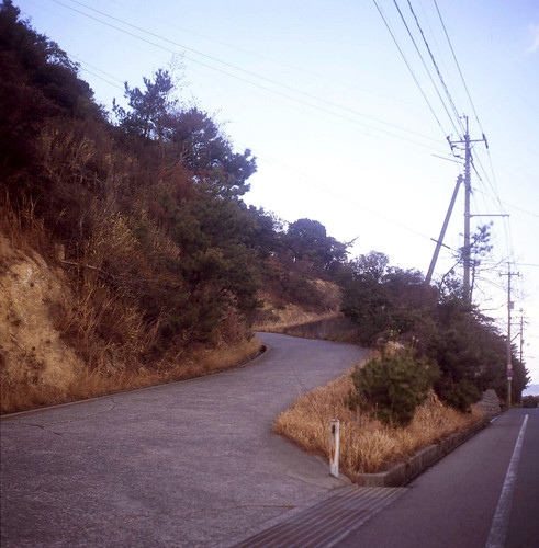 Paths To Naoshima - 1