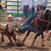 Steer Wrestling on Slack Day by DennyMont