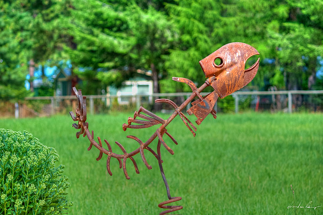 Yard Art Ideas http://www.flickr.com/photos/nature-and-i/5989802086/