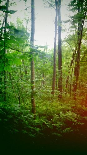 camping hiking backpacking waterfalls blackrockmountainstatepark