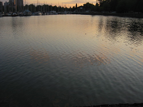 trees sunset water vancouver downtown harbour stanleypark