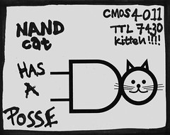 NAND Cat has a Posse