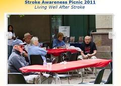 Stroke Picnic OC 2011d