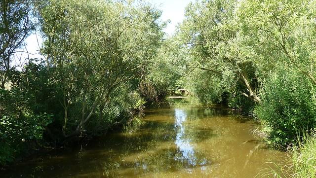 high hauxley nature reserve