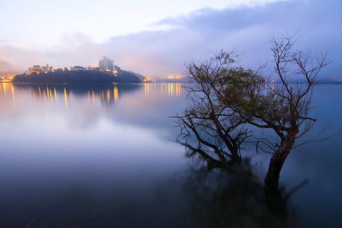 morning light lake mountains reflection tree misty sunrise foggy taiwan 南投 台灣 山 日月潭 sunmoonlake nantou 湖泊 日出 樹 霧 倒影 枯木 枯樹 出水口