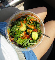 Have Salad Will Travel