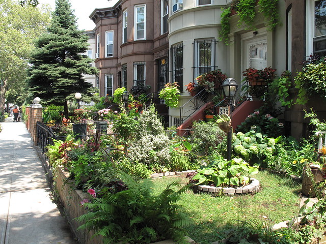 Greenest Block in Brooklyn 2011 finalist at E 25th Street between Clarendon Road and Avenue D