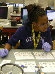 Forensies vs forensiese wetenskap