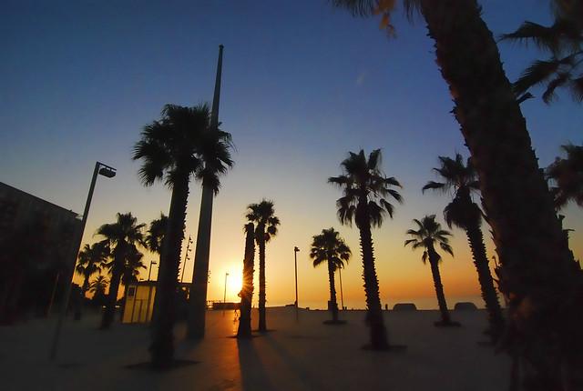 THINGS TO DO IN BARCELONA, BARCELONETA