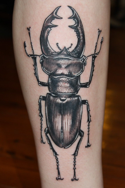 stag beetle tattoo | F...