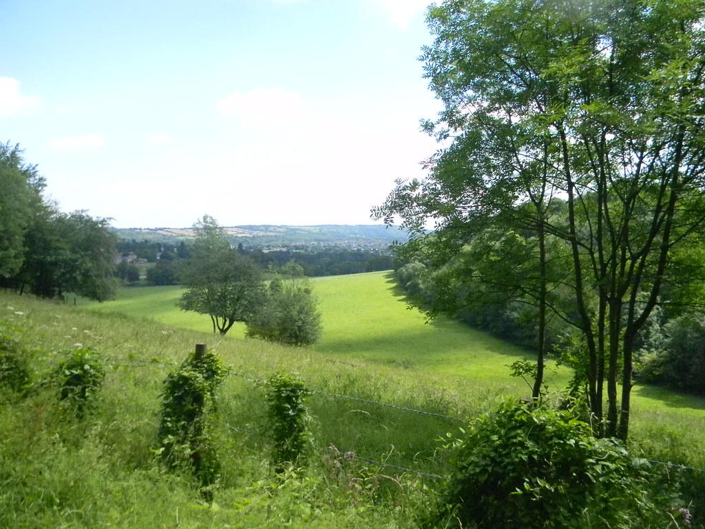Early View Merstham to Tattenham Corner