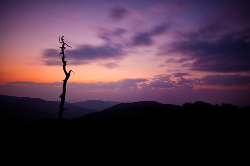 park longexposure morning sky mountains tree colors silhouette sunrise dawn virginia shenandoah overlook skylinedrive