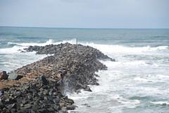 Understanding coastal jetties